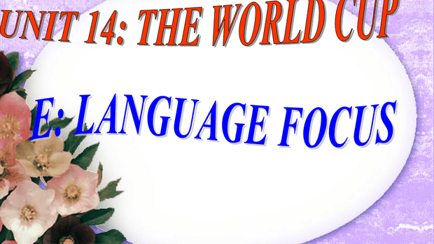 UNIT 14 - THE WORLD CUP - LANGUAGE FOCUS